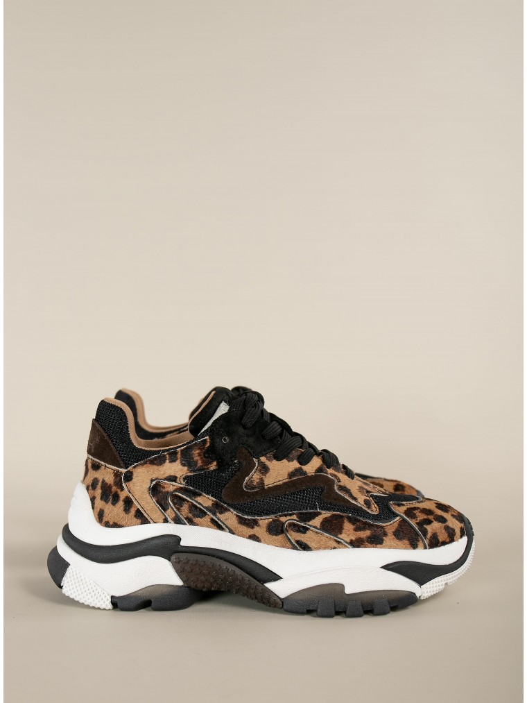 Ash Sneakers Addict Ter-Animal Print